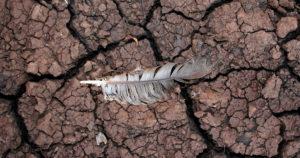 calentamiento global el síndrome de yo no fui blog futuris